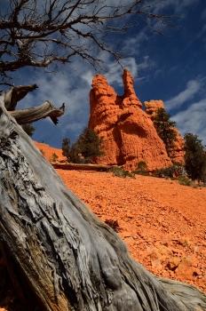 Red Canyon, Utah, Etats-Unis, United States