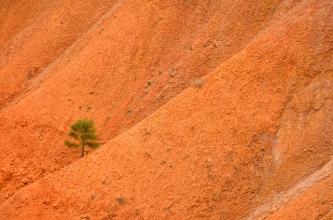 Bryce Canyon, Utah, Etats-Unis, United States