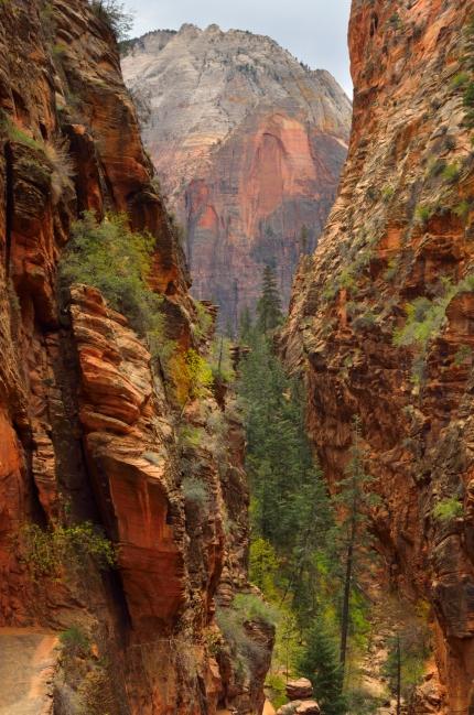 Zion, Utah, Etats-unis, United States